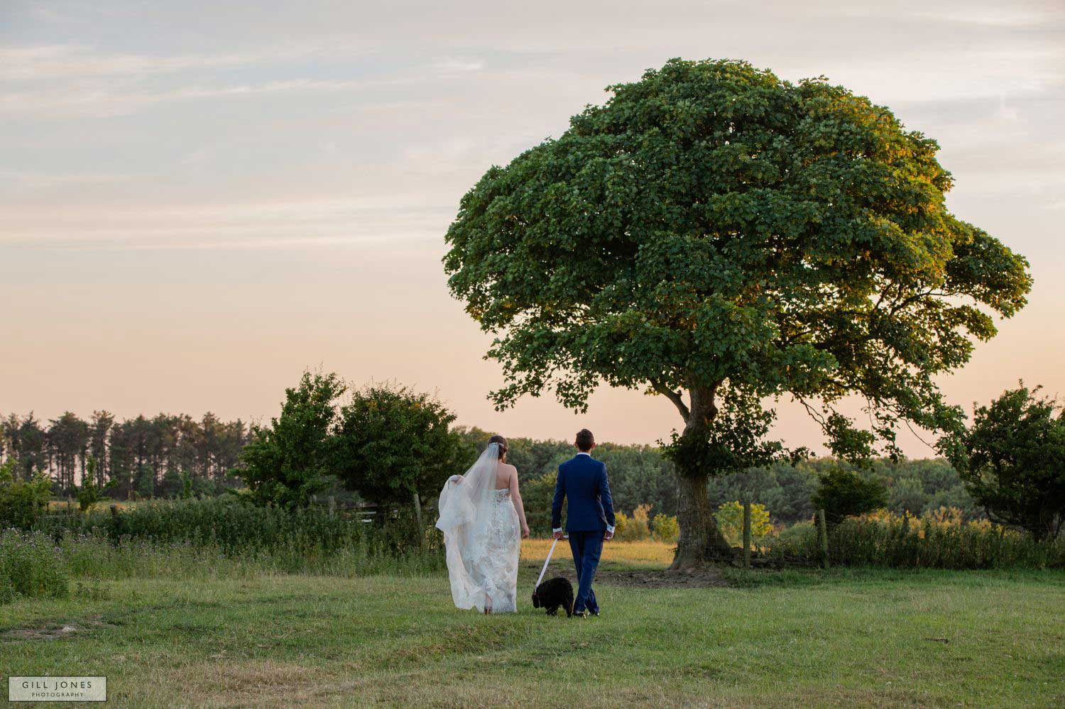 An Anglesey Farm wedding
