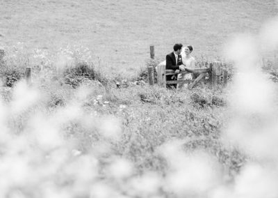 bride and groom leaning on a gate in a Anglesey field